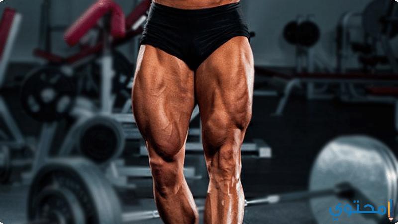 أقوى تمرينات عضلة الرجل بالصور