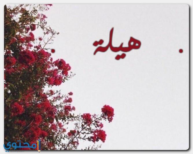 معنى اسم هيلة وصفات حاملة الاسم Helah موقع محتوى