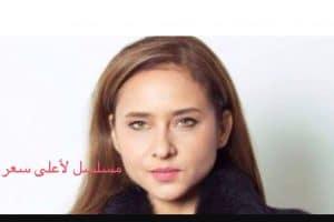 قصة وموعد عرض مسلسل لأعلى سعر نيللي كريم