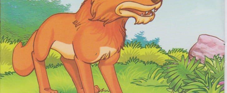 قصة الذئب والحمار قصص اطفال صغار