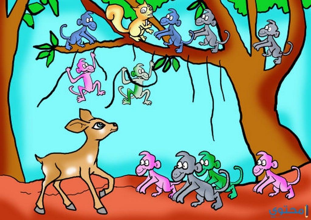 قصة الغزالة يارا و القرود