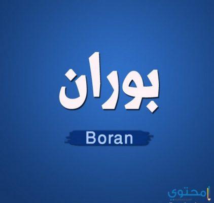 معني اسم بوران