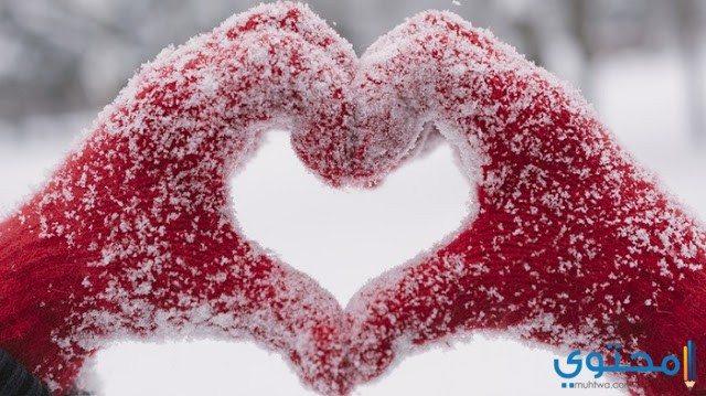 صور عيد الحب