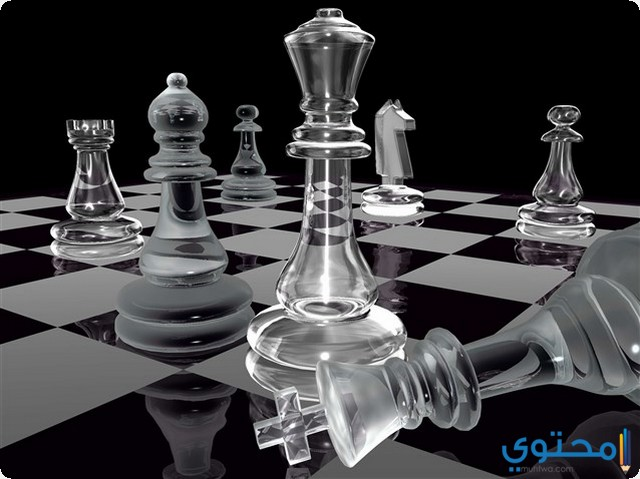 الشطرنج في المنام