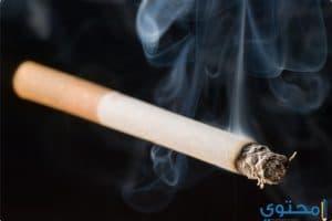 تفسير رؤية السجائر في المنام ومعناه