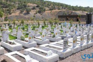 تفسير حلم المقابر للعزباء