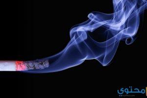 تفسير حلم التدخين