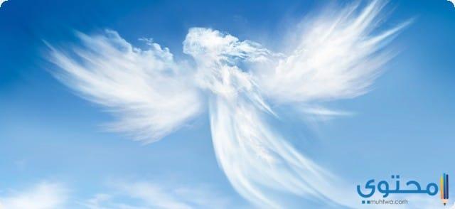 الملائكة في المنام
