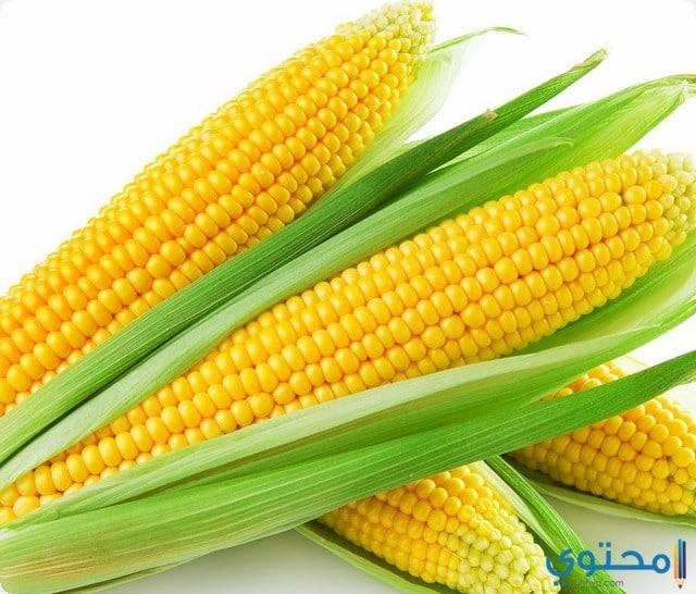 الذرة في المنام