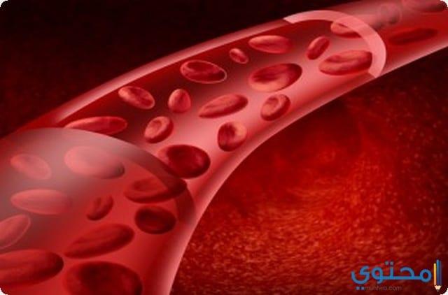 الدم في المنام