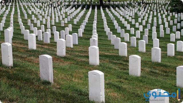 تفسير حلم المقابر في المنام لابن سيرين والنابلسي موقع محتوى