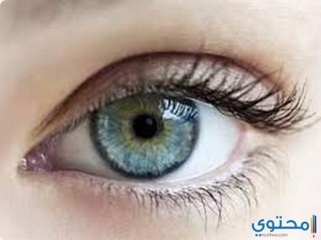العيون في المنام