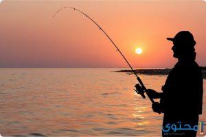 معني صيد السمك في المنام
