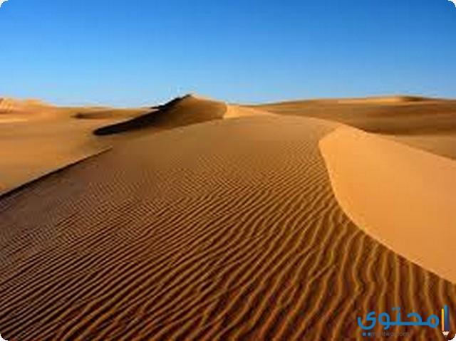 الرمل في الحلم