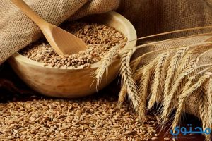 معنى حلم القمح في المنام