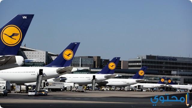 المطار في المنام
