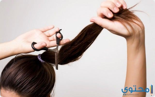 خصلة شعر في المنام