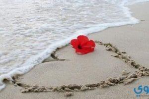 تفسير حلم الاعتراف بالحب