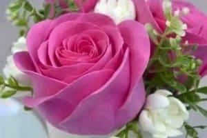 تفسير حلم الورد