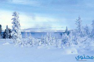 معنى حلم الثلج في المنام
