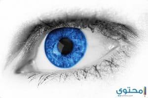 العيون الزرقاء في المنام