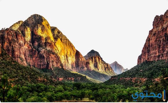 تفسير رؤية حلم الجبل في المنام لابن سيرين موقع محتوى