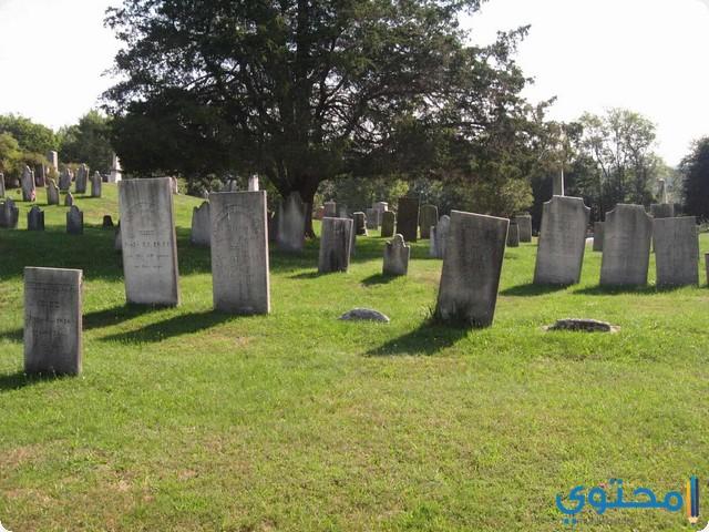 تفسير حلم رؤية القبور في المنام ودخول المقابر لابن سيرين