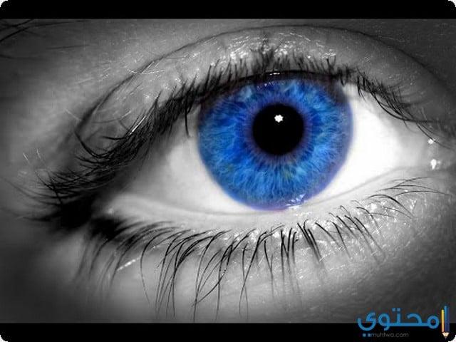 رؤية العيون الزرقاء
