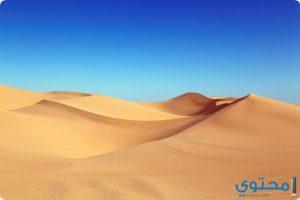 تفسير حلم الصحراء