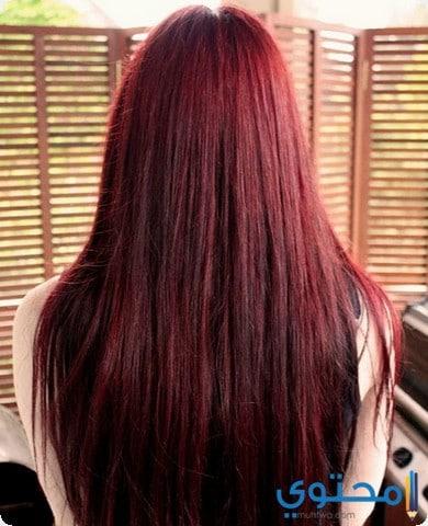 تفسير الشعر الأحمر في المنام موقع محتوى