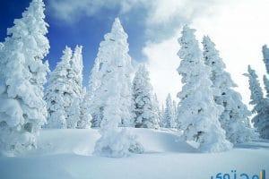 تفسير الثلج في المنام