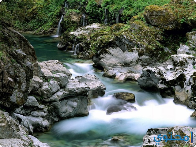 النهر في المنام