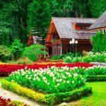 تفسير رؤية البستان الأخضر في المنام ومعناه