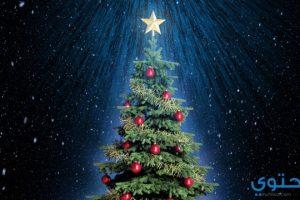 معني رؤية شجرة عيد الميلاد في المنام