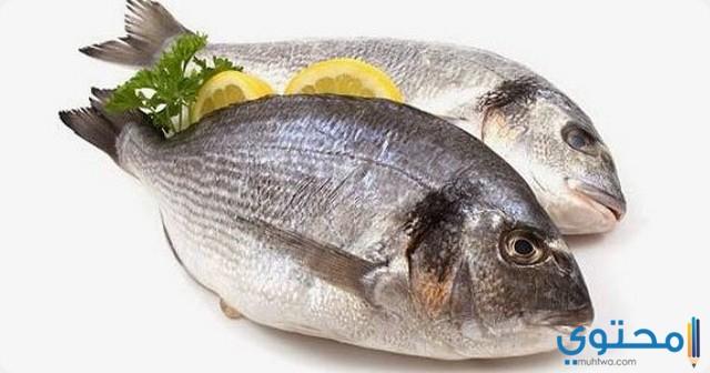 تفسير حلم السمك في المنام 2020 معنى رؤية السمك موقع محتوى