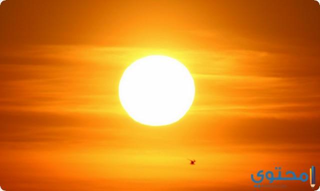 سورة الشمس