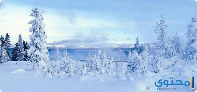 تفسير رؤية الثلج في المنام حلم الثلج والبرد موقع محتوى