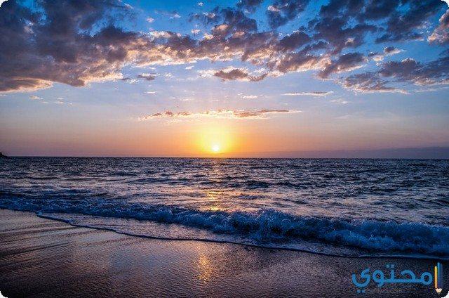 الشاطئ في الحلم