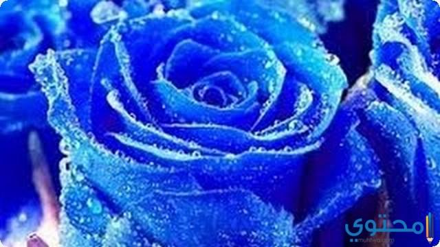 تفسير اللون الأزرق