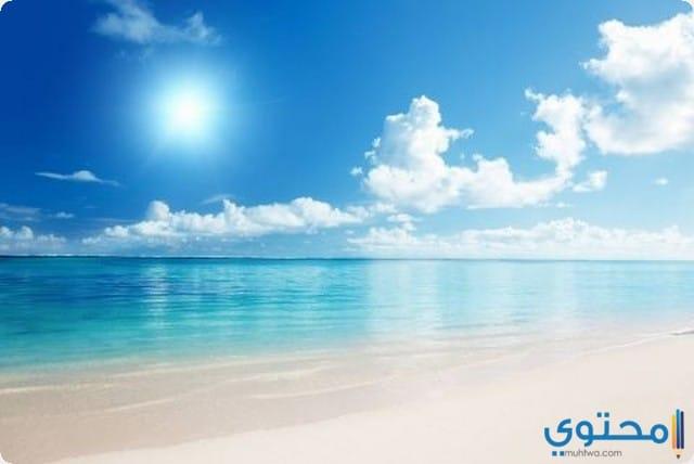 البحر الهادئ في المنام