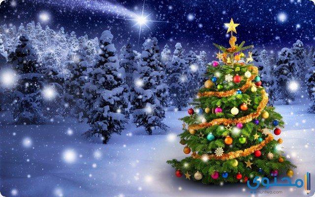 رؤية شجرة عيد الميلاد في المنام
