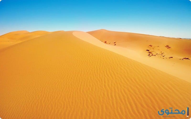 تفسير الاحلام والرؤي الرمل في المنام