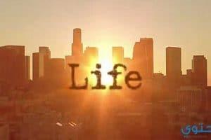 أمثال وعبر عن الحياة جديدة
