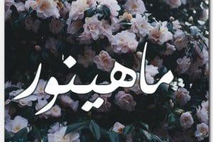 معنى اسم ماهينور Mahienour بالتفصيل