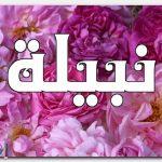معنى اسم نبيلة وشخصيتها
