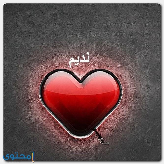 معنى اسم نديم وصفات شخصيته Nadim موقع محتوى