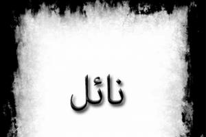 معنى اسم نائل Nael بالتفصيل