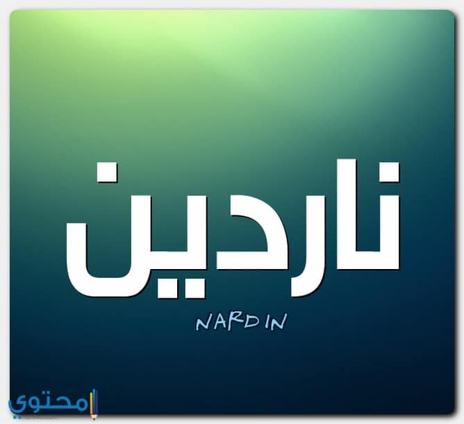 اسم ناردين