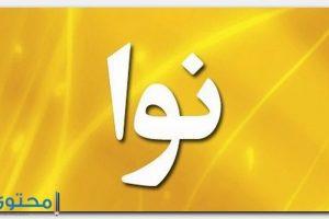 معنى اسم نوا Nawa وحكم التسمية به