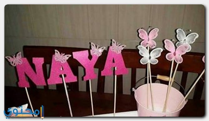 الأصل في تسمية Naya